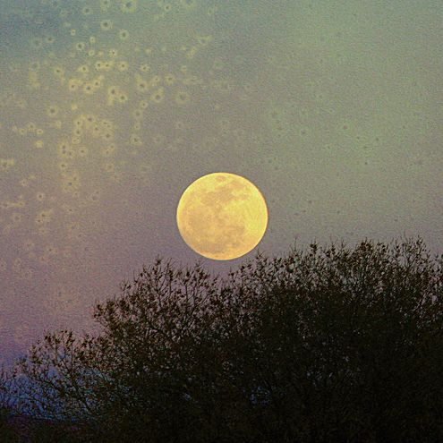 moon spring in -#main