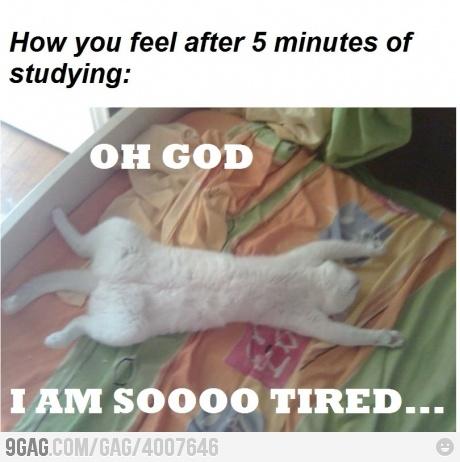 so true lol!!!