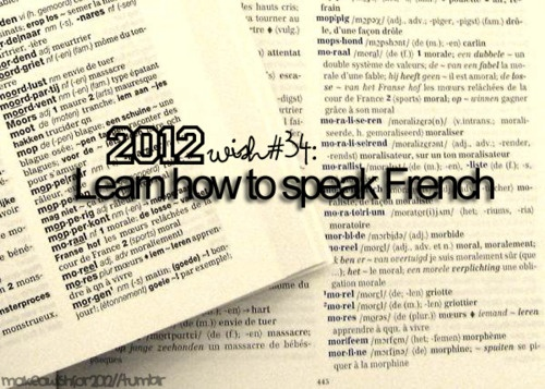 i want to learn how to speak french