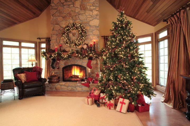 Luxury Christmas trees. | Navidad
