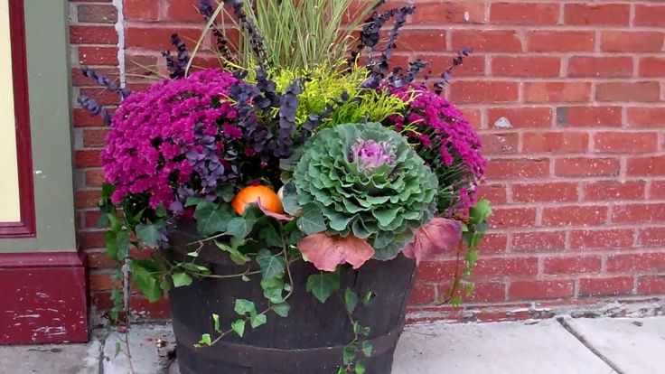 Fall Gardening Outside Pinterest