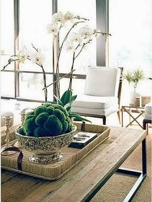 Even A Coffee Table Needs A Tablescape Tablescapes