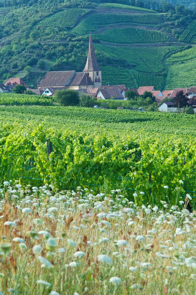 Niedermorschwir, Alsace, France
