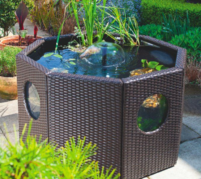Copyright practical fishkeeping pond paradise pinterest for Koi pond setup