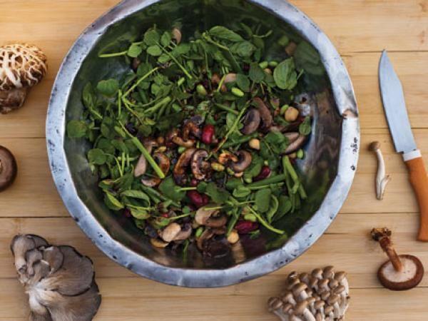 mushroom salad wild mushroom salad recips warm mushroom and mushroom ...