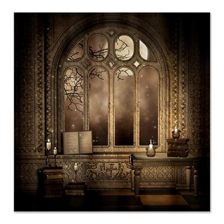 Gothic library window shower curtain on for Gothic bathroom ideas
