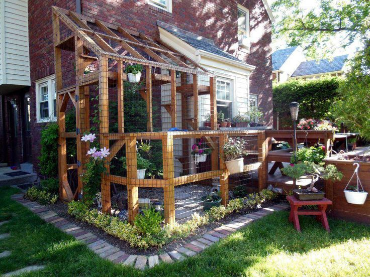 Backyard Enclosures For Cats : Limited space? How perfect is this?