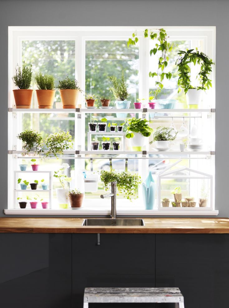 Herb garden in the window garden tea party pinterest for Garden window