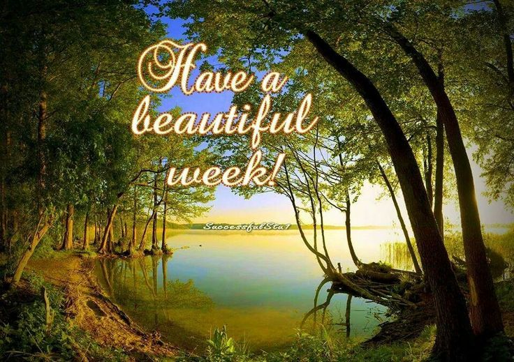Image result for have a beautiful week