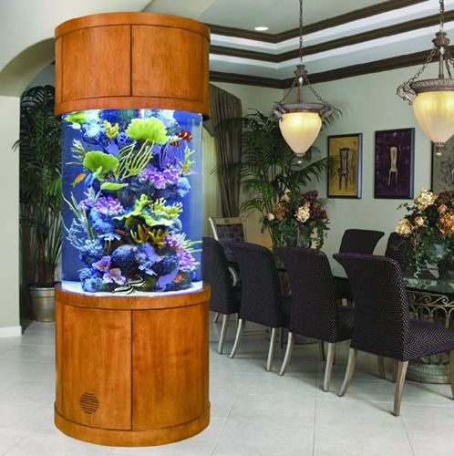 Cool fish tanks marine tropical live showed this led for Cool fish tanks