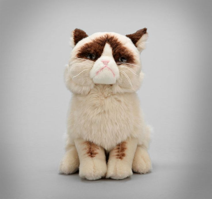stuffed cat for valentines day