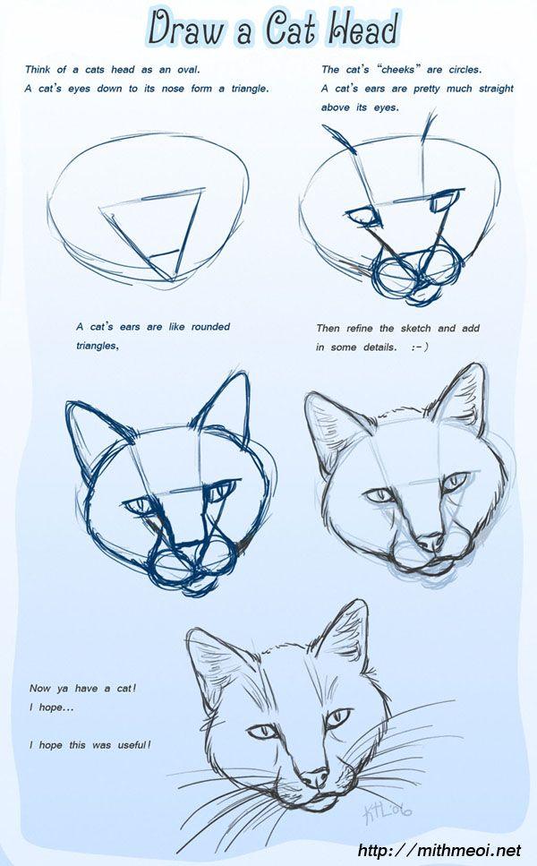 Draw a cat head kid crafts fun art pinterest for Fun to draw cat