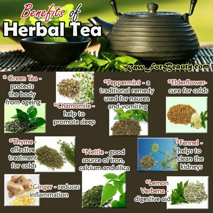 benefits of herbal medicine essay