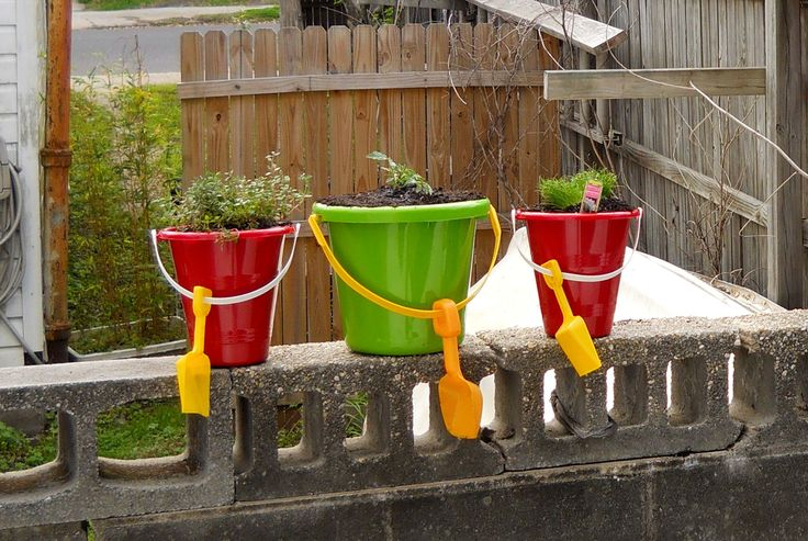 Urban gardening - how not to let a nonexistent yard, slumlord or lack of budget hold you back!