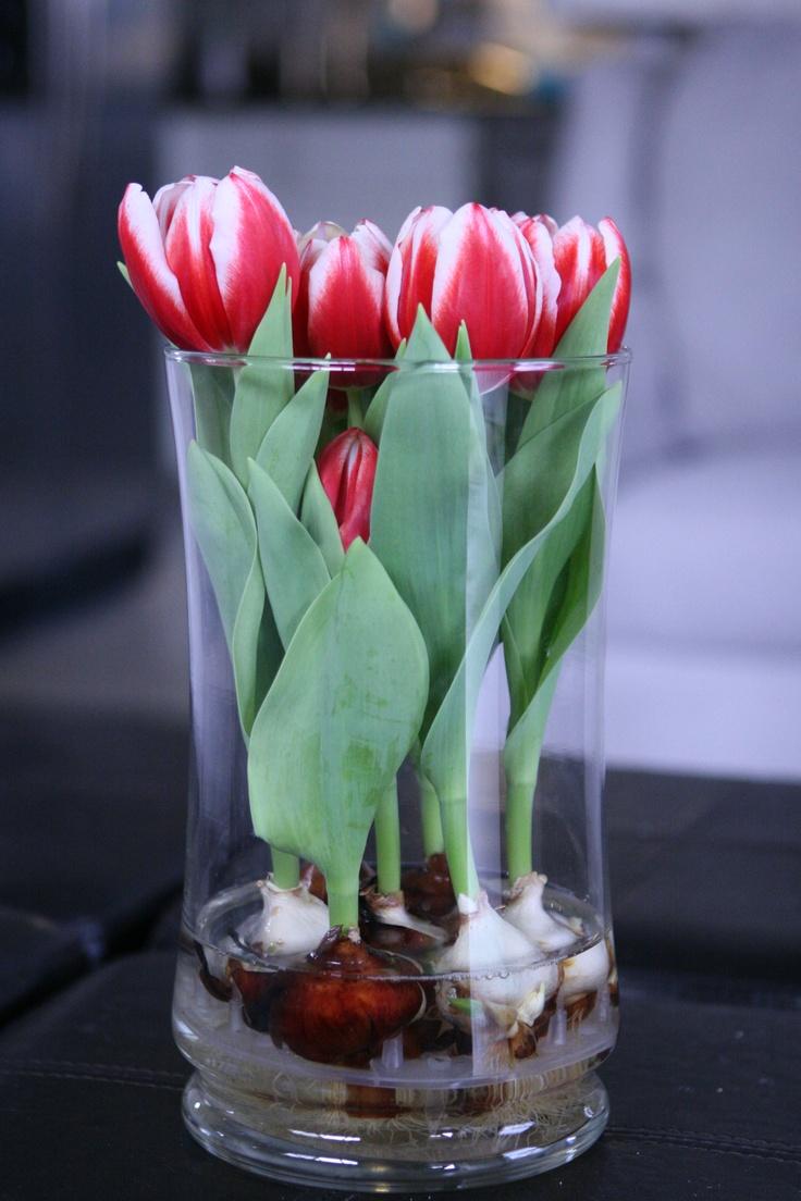 Ваза для посадки цветов