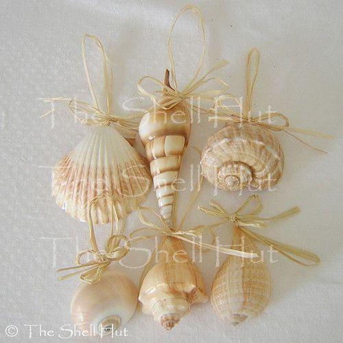 Seashell christmas tree ornaments christmas by the sea for Seashell ornament ideas