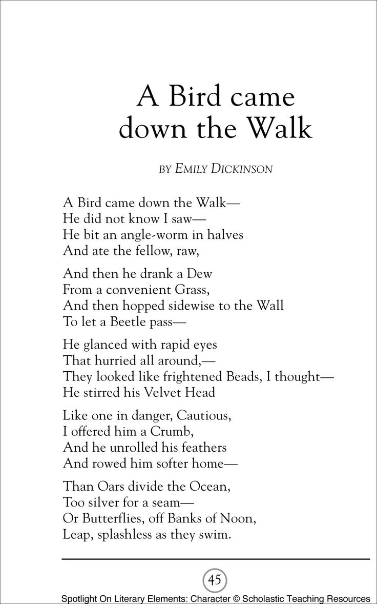 a bird came down to the walk A bird came down the walk by emily dickinson also referred to as in the garden, dickinson's poem is a vivid account of a bird eating a wormit's typically taught in fourth or fifth grade, reminding students they don't necessarily need to travel far in order to find drama and compose great poetry.