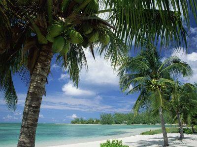 Cayman Kai