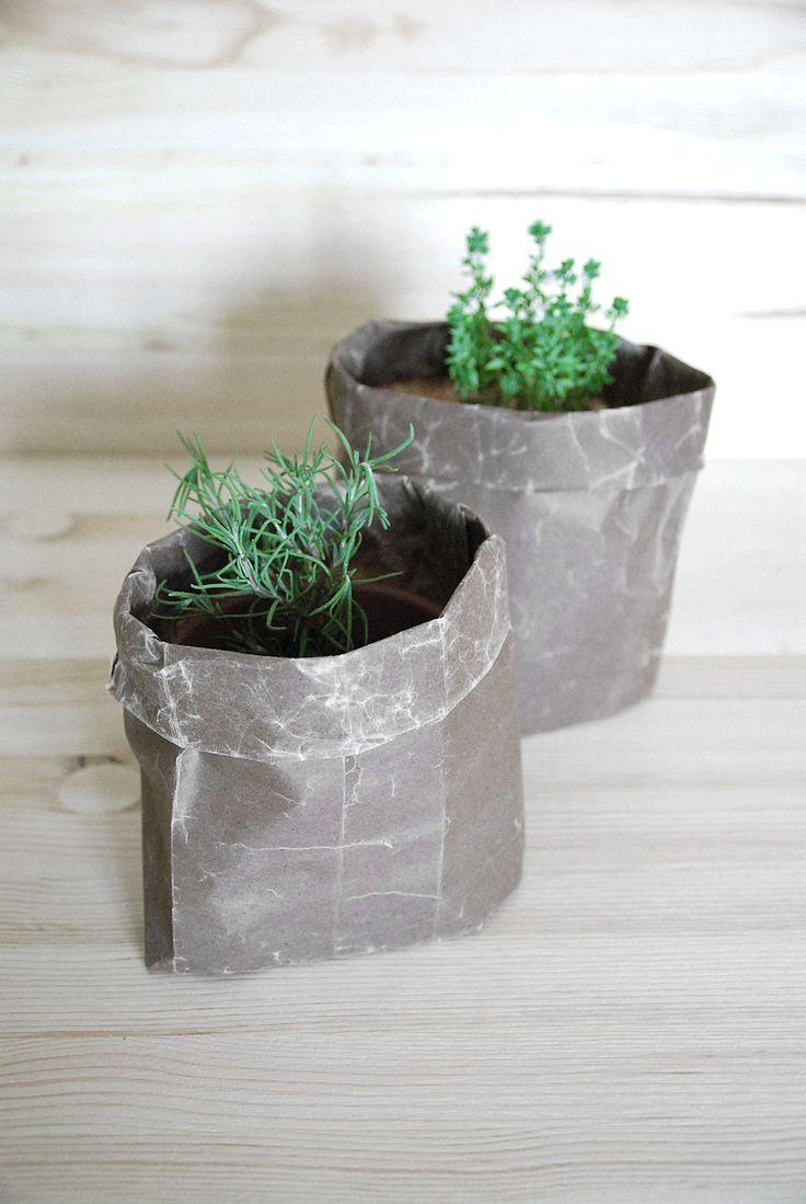 DIY: Wax paper planters