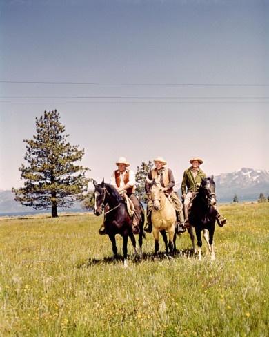 Bonanza ~Horse's Names~  Bens' Horse (Buck), Hoss's Horse (Chub),  Joe's Horse (Cochise), Adam's Horse (Sport).