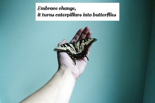 Change Makes Butterflies