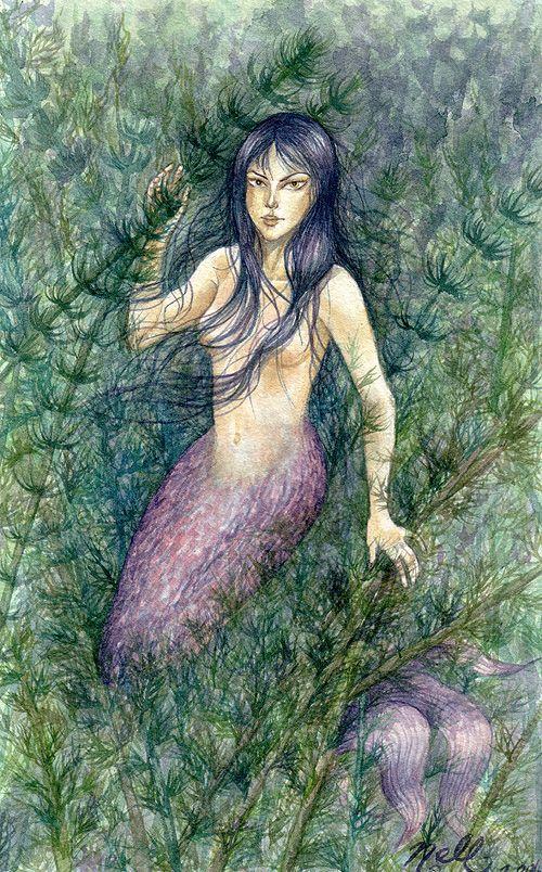 Sirens of the Deep Mermaid Camp  Weeki Wachee Springs