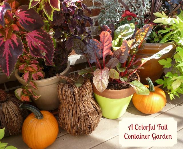 fall container garden ideas autumn beauty halloween decor pintere