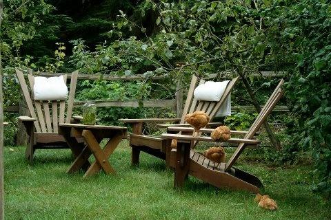 Modern homesteading farming homesteading pinterest for Modern homesteading