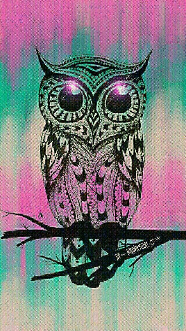 Cute owls tumblr
