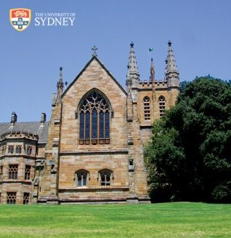 Occupational Therapy university of sydney art