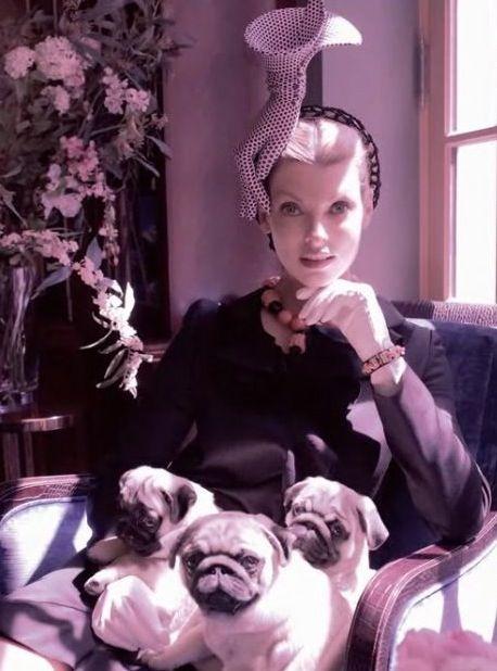 Η κυρία με  τα Pugs ..