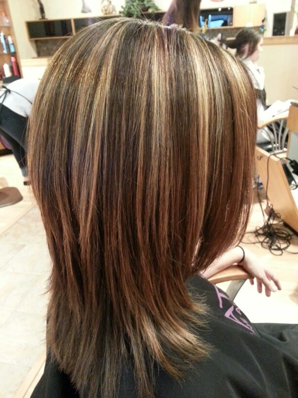 Blonde Highlights With Chocolate Lowlights 528  K H  Hair By Crystal  Pin