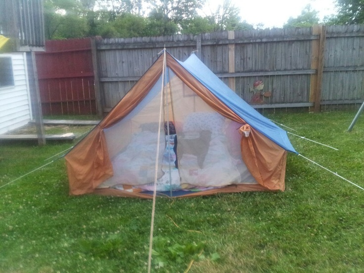 Family Backyard Camping : backyard camping