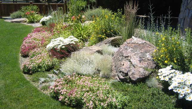 Rock garden plantings berm pinterest for Cj garden designs