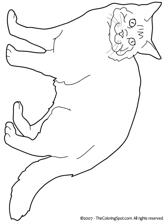 coloring pages for maine - photo#18
