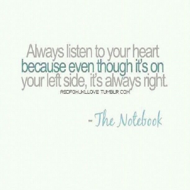 Love Quotes From The Notebook the notebook quote.lov...