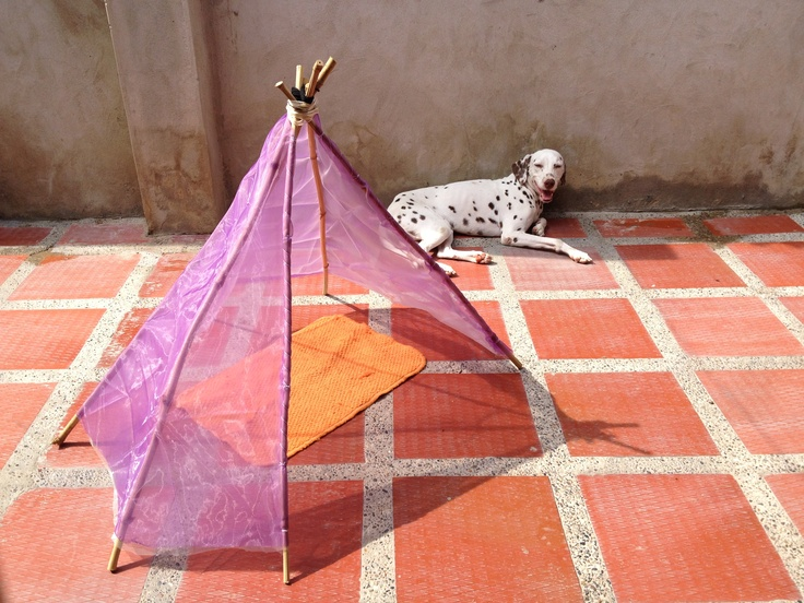 Pin by katihuska carmona on diy recycling pinterest for Dog tipi diy