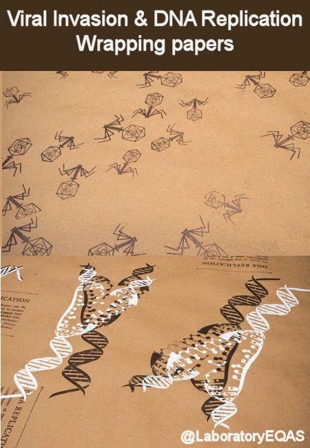 Biology DNA Replication