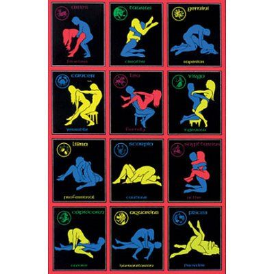 Zodiac Sex Positions Poster 20