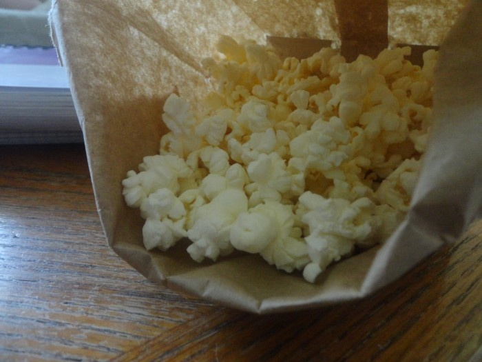 Homemade Microwave popcorn--no oil or butter needed!