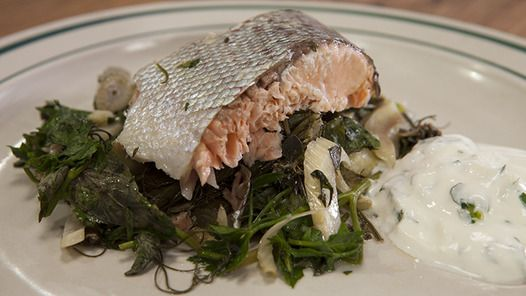 ... salmon fennel roasted whole salmon fennel roasted whole salmon whole