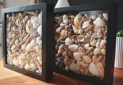 Seashell Shadow Box!