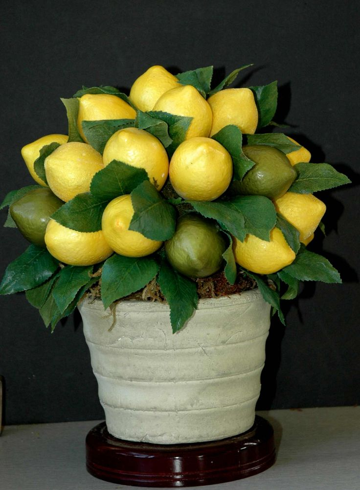 Perfect centerpiece for a lemon-lime themed party.