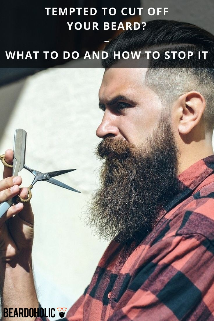 8 Tips On How To Stop Beard Itch Beardoholic