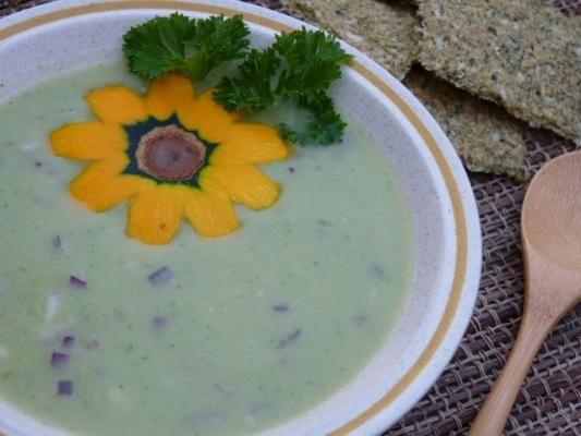 Raw Food Blog » Creamy Summer Squash Onion Soup