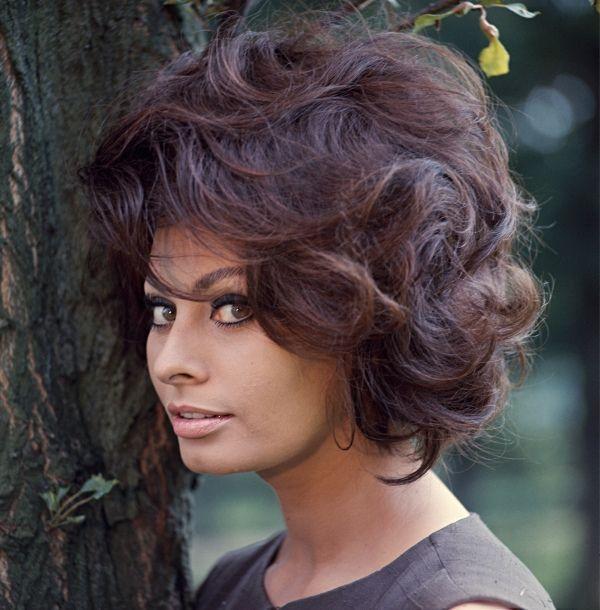 Sophia Loren by Chiara Samugheo Hairstyle Sweety Pinterest