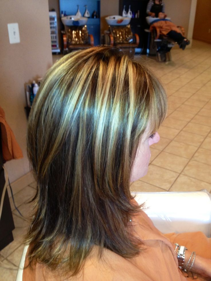 Soft Blonde Highlights And Light Brown Lowlights | Dark Brown Hairs