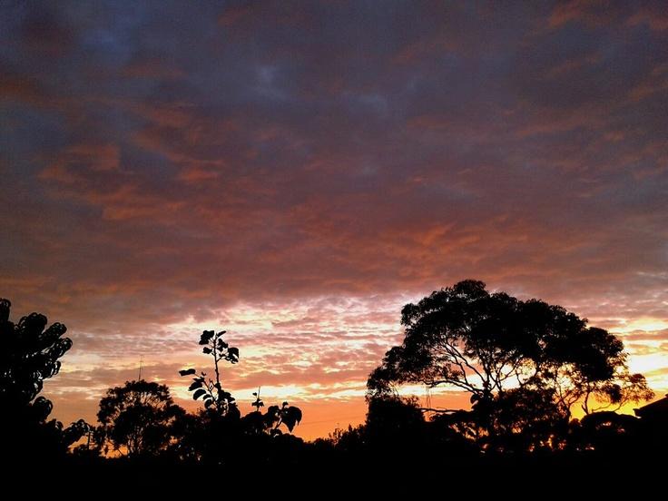 Kadina Australia  city pictures gallery : sunrise in Kadina, Sth. Australia | Gardening tips and ideas | Pinter ...