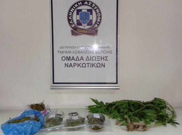 Σύλληψη 35χρονου για καλλιέργεια και κατοχή κάνναβης