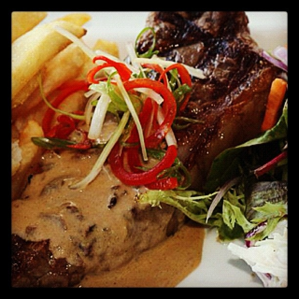 sauce steak with whiskey mushroom sauce steak with whiskey mushroom ...